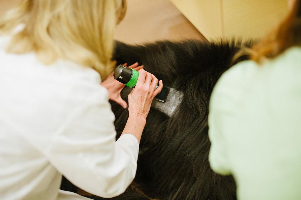 Shaving for intradermal skin test